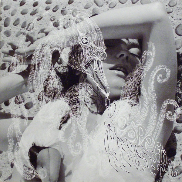 Bjork Vespertine - disc vinyl LP